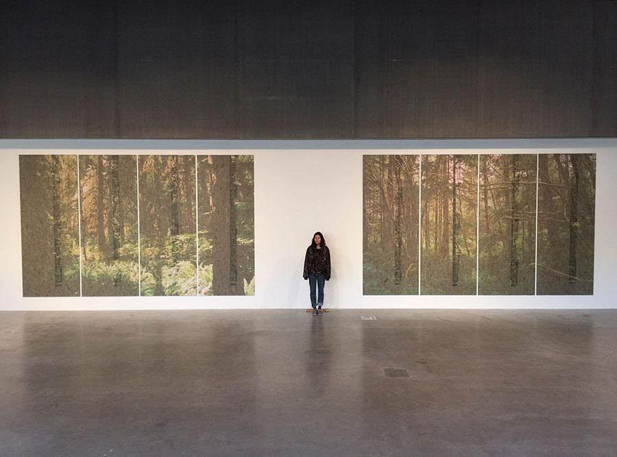 sutherland-st-louis-art-installation-02